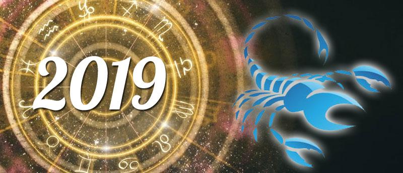 Scorpion 2019 horoscope