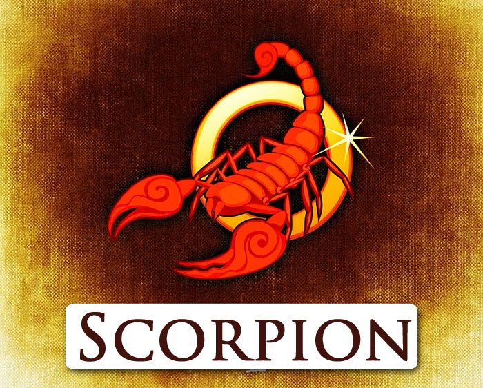 28 octobre  signe du zodiaque Scorpion
