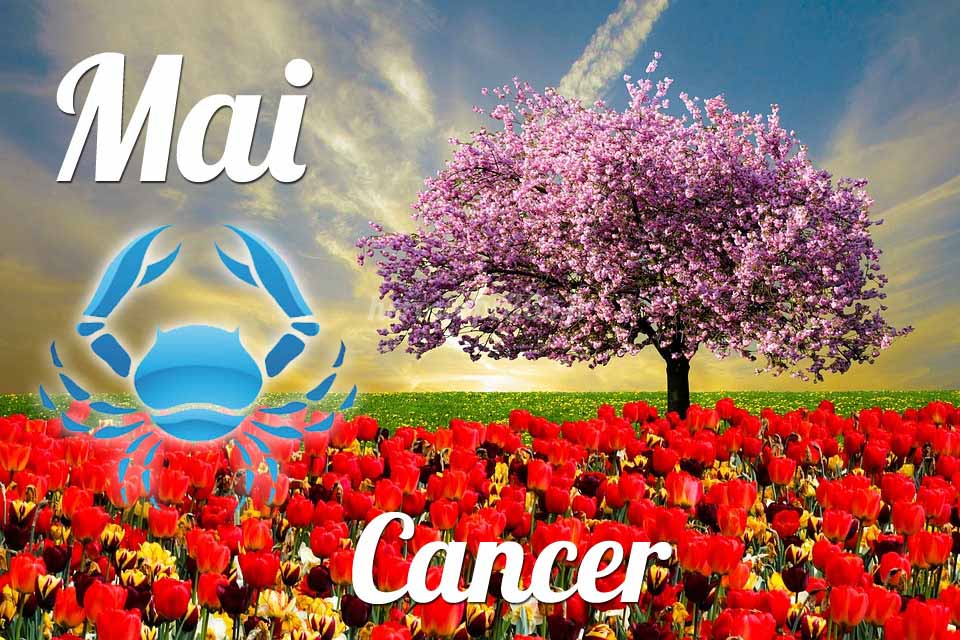 Cancer horoscope Mai