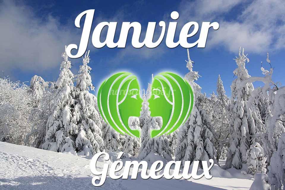 Gémeaux janvier 2019