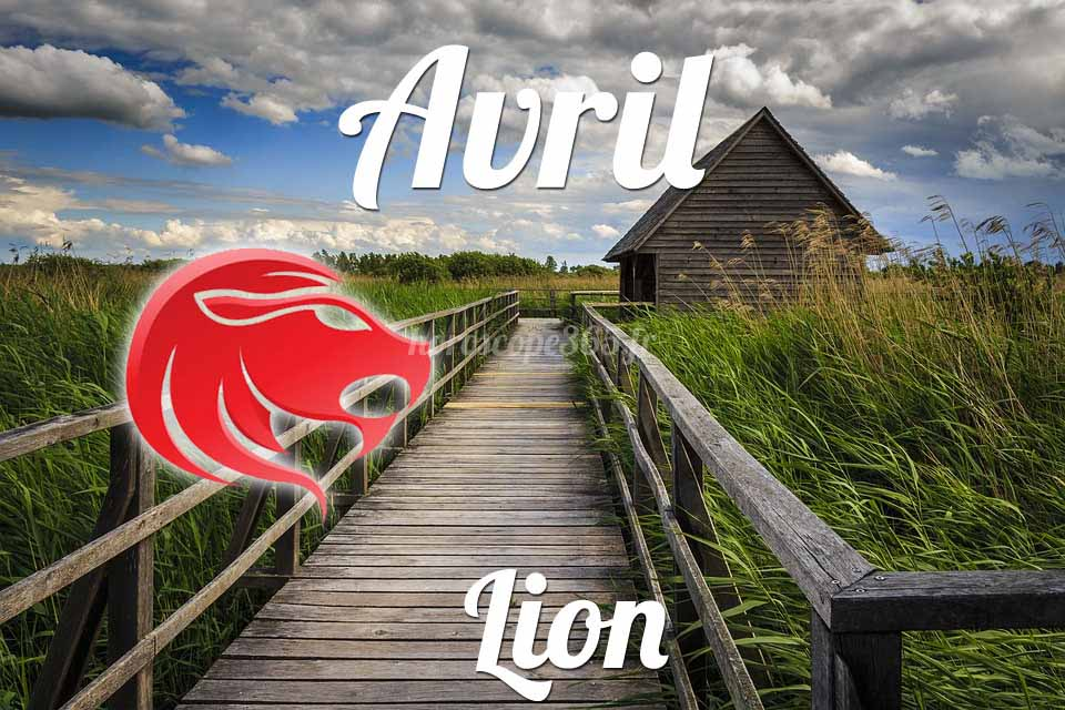 Lion avril 2021
