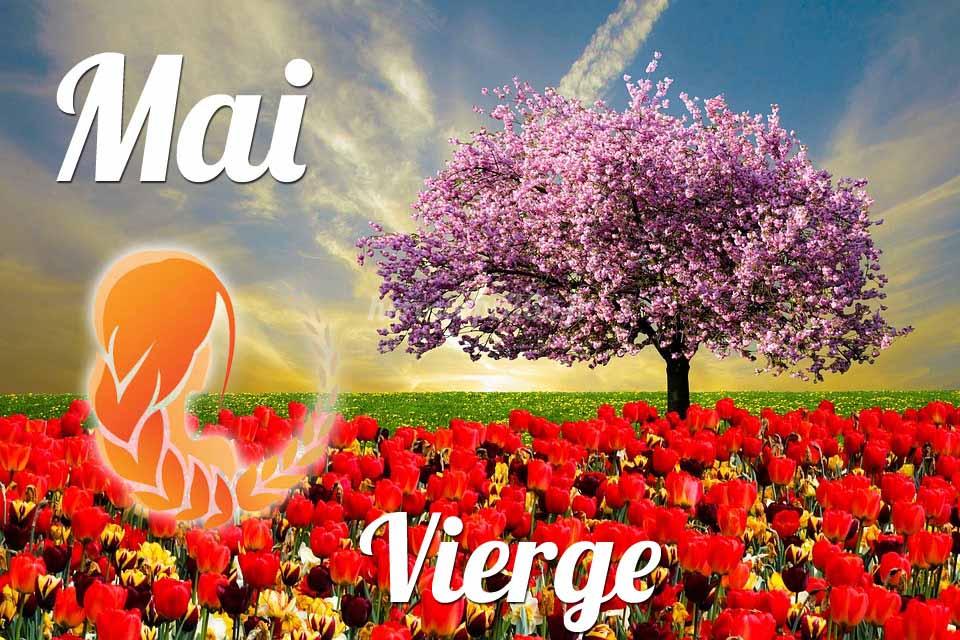 Vierge horoscope Mai