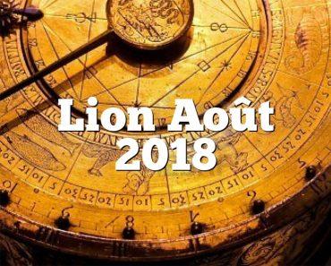 Lion Août 2018