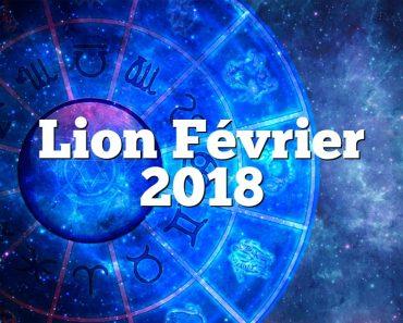 Lion Février 2018