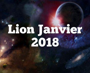 Lion Janvier 2018