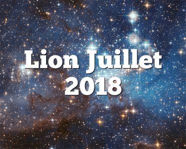 Lion Juillet 2018