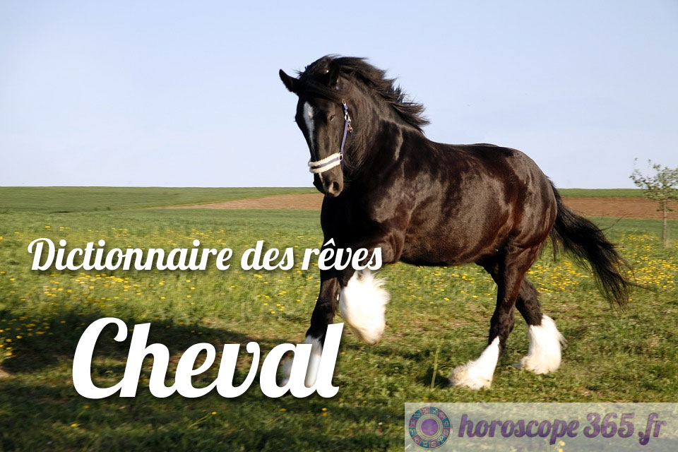Interprétation et signification du rêve : Cheval