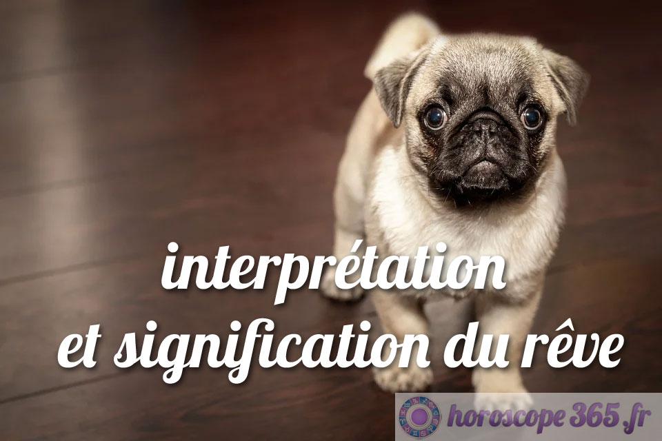 Dictionnaire des rêves : Chien