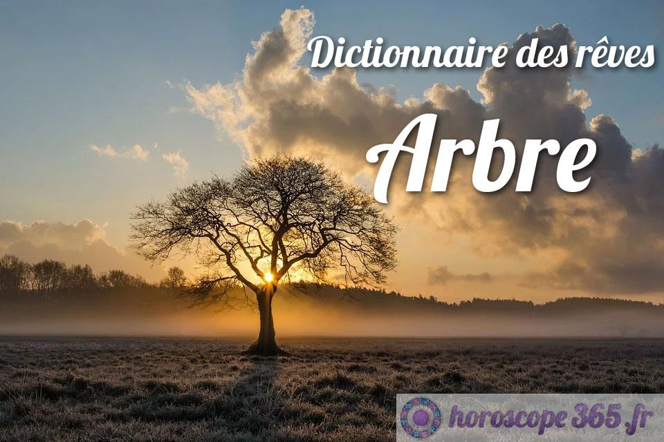 Dictionnaire des rêves : Arbre