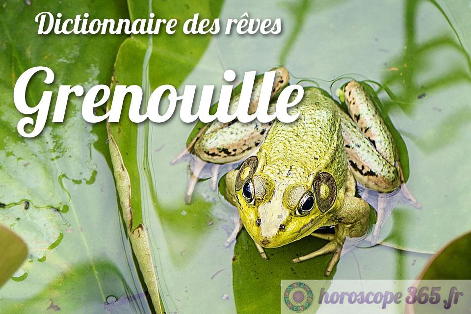 Dictionnaire des rêves : Grenouille