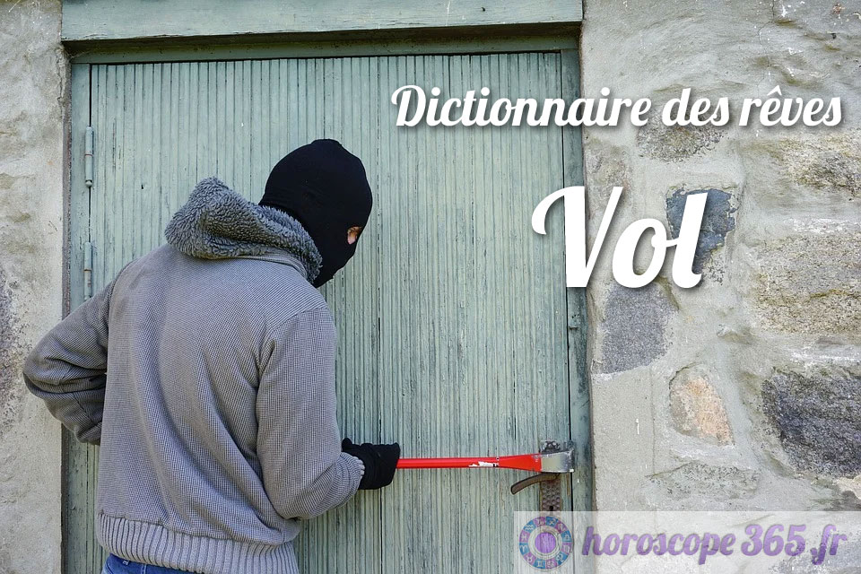 Dictionnaire des rêves : Vol