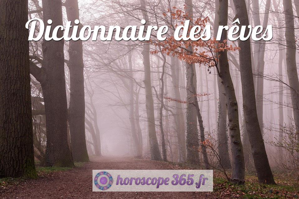Interprétation et signification du rêve : Forêt
