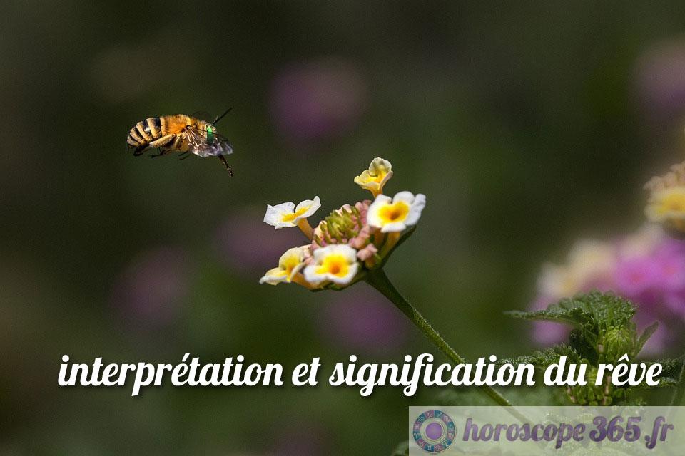 La signification derrière l'attaque d'une abeille
