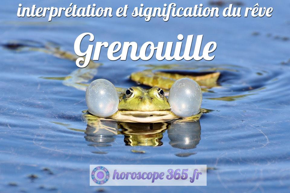 Rêve du Grenouille