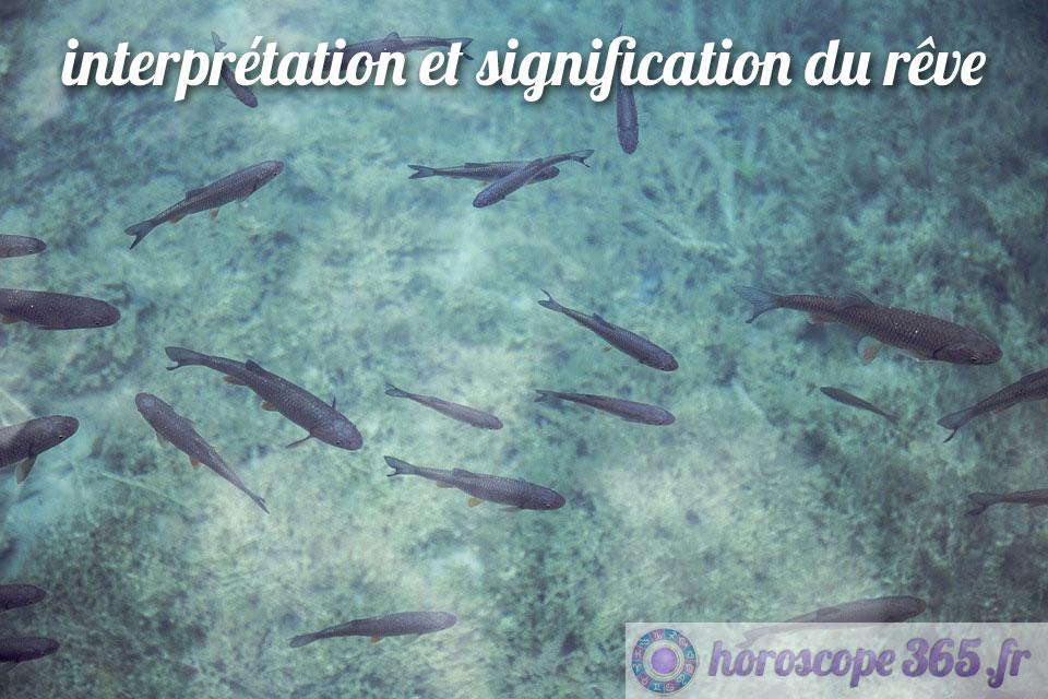 Dictionnaire des rêves : Poisson